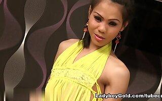 LadyboyGold Movie: Pastel Pantyhose Bareback
